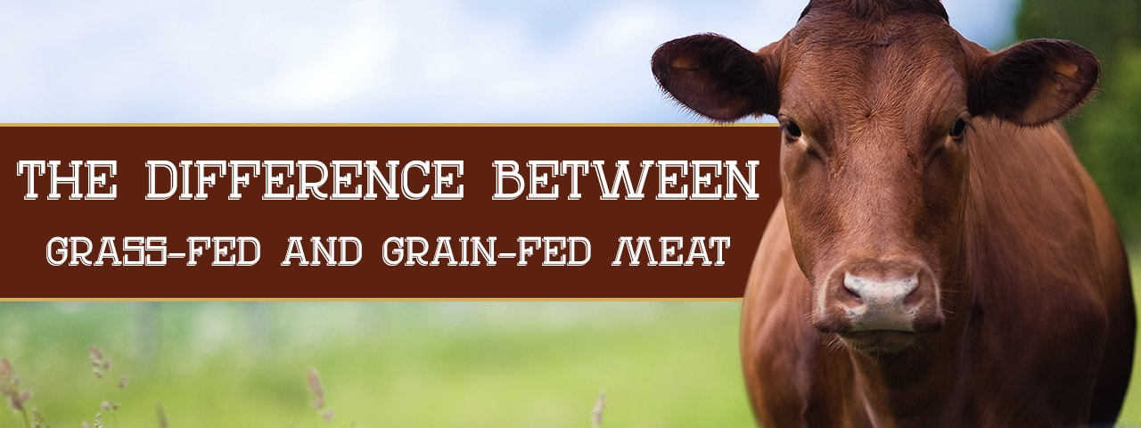 the difference between grass-fed and grain-fed meat